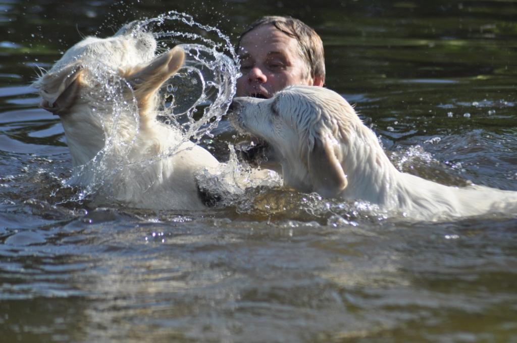 husse badar med hundarna i vår damm 004
